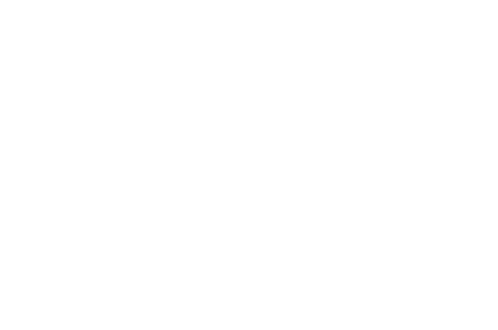 Official Selection Heartland International Film Festival 2019