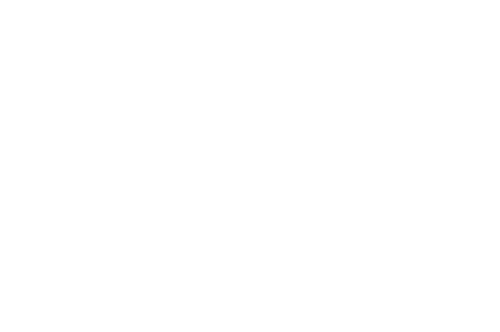 Human Rights and Dignity Award Tryon International Film Festival 2019 laurel